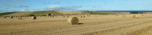 Scottish Machinery Rings